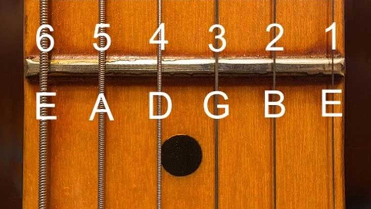 Guitar Strings Depicted