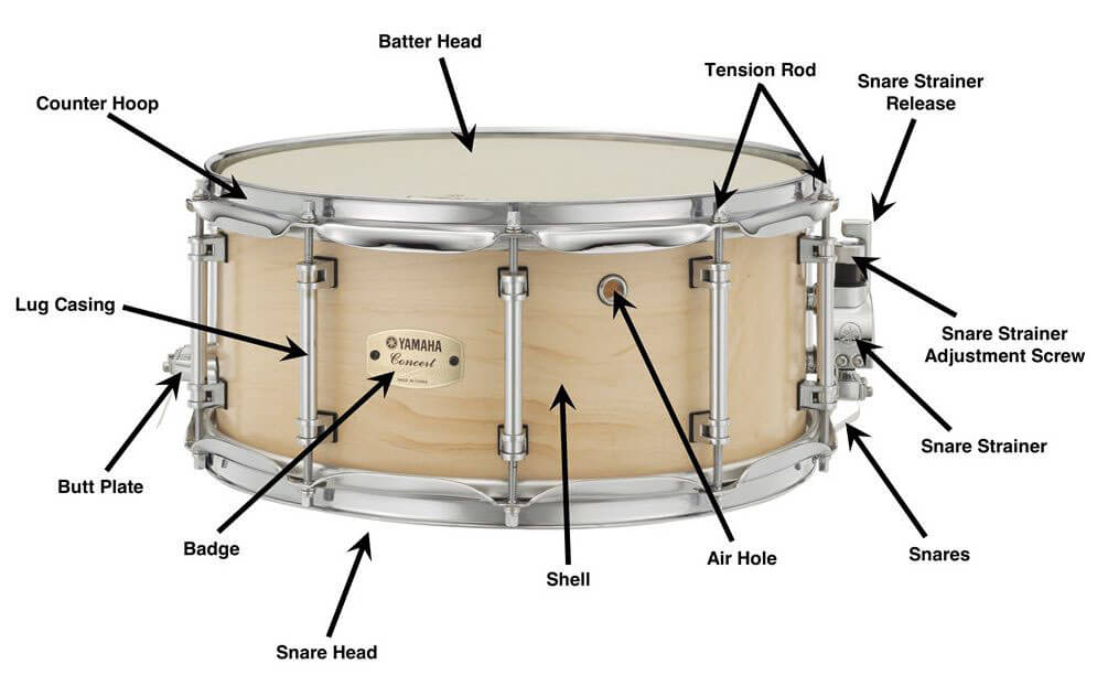 Snare's Parts